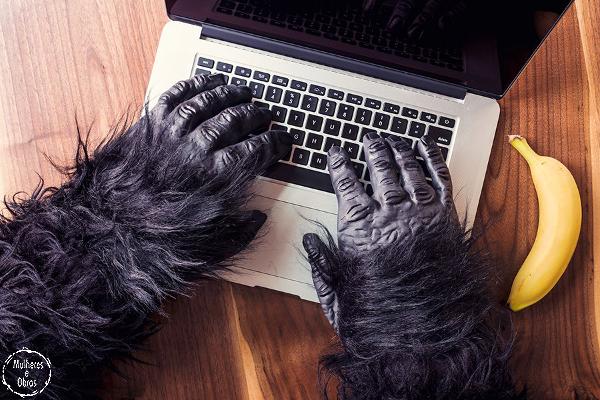 macaco-computador